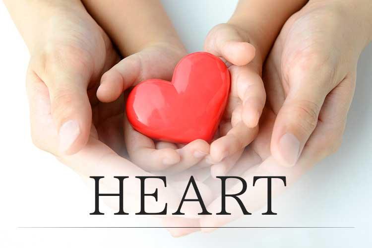 bt_heart2